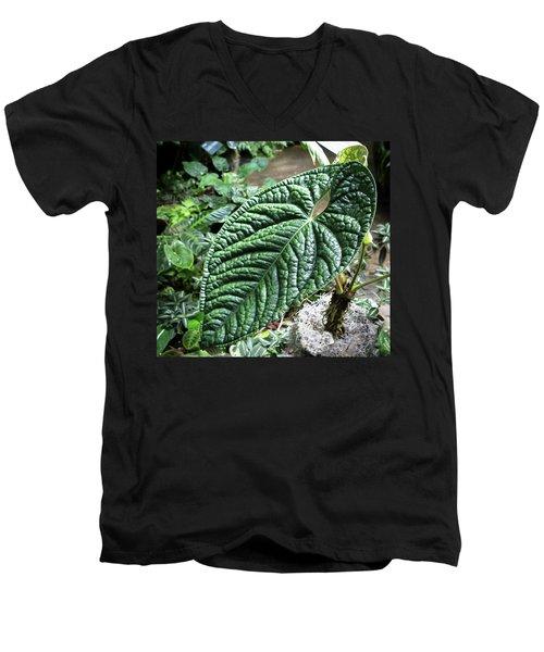 Texture Of A Leaf Men's V-Neck T-Shirt