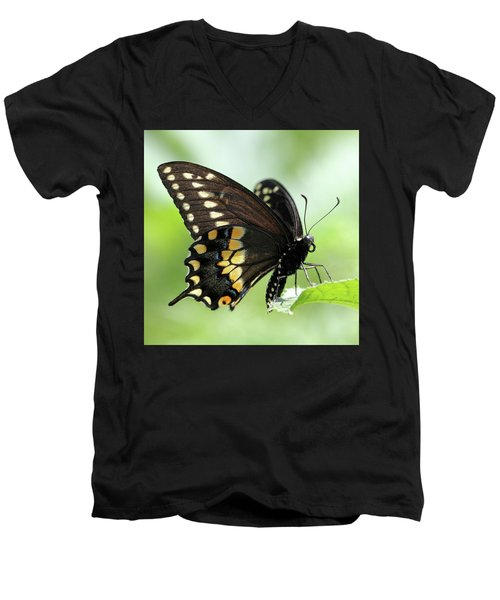 The Beautiful Black Swallowtail Men's V-Neck T-Shirt