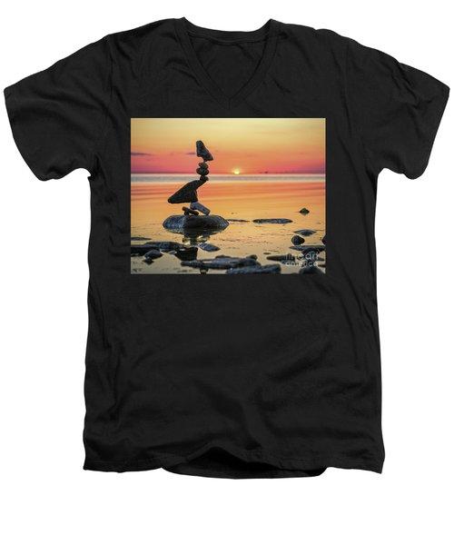 The Bird Men's V-Neck T-Shirt