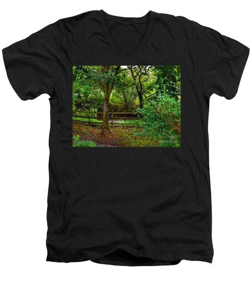 The Brook At Gibbon's Bridge Men's V-Neck T-Shirt