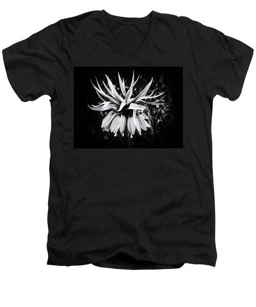 The Crown Men's V-Neck T-Shirt