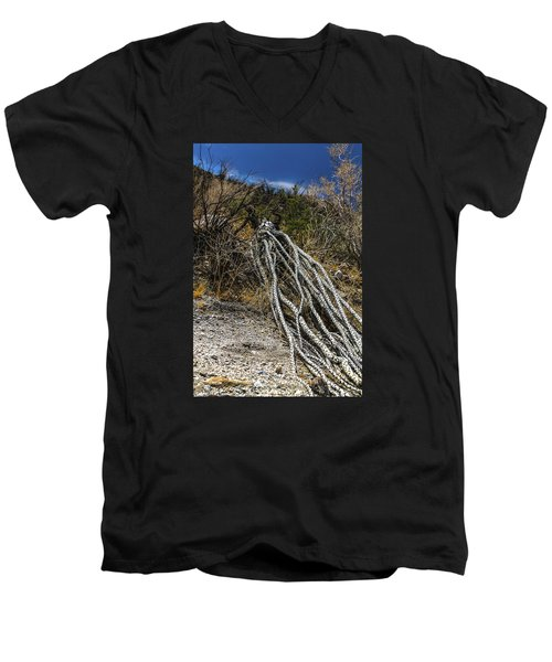 The Desert Sentinel Men's V-Neck T-Shirt