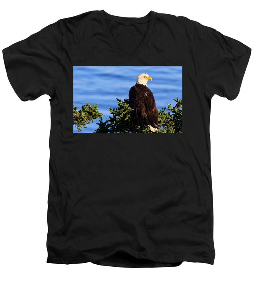The Eagle Has Landed Men's V-Neck T-Shirt