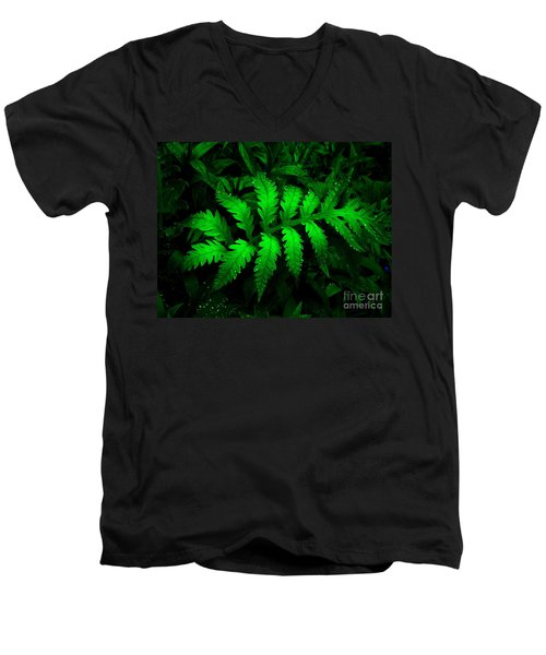 Men's V-Neck T-Shirt featuring the photograph The Fern by Elfriede Fulda