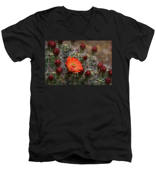 Men's V-Neck T-Shirt featuring the photograph The First Bloom  by Saija Lehtonen