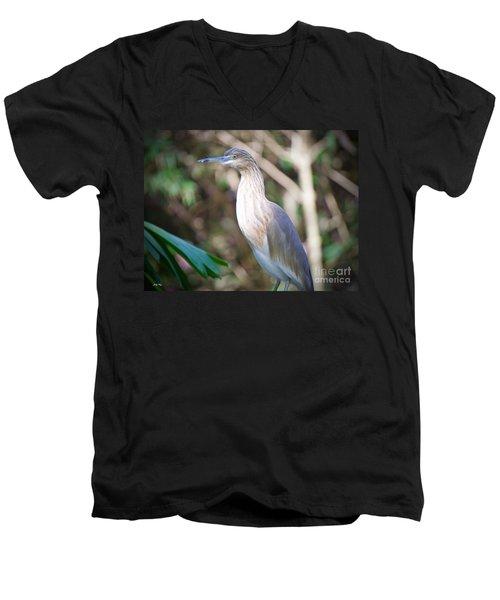 The Heron Men's V-Neck T-Shirt