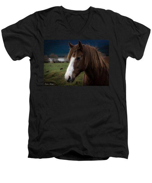 The Horse Men's V-Neck T-Shirt by Andrew Matwijec