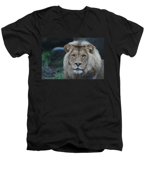 Men's V-Neck T-Shirt featuring the photograph The King by Laddie Halupa