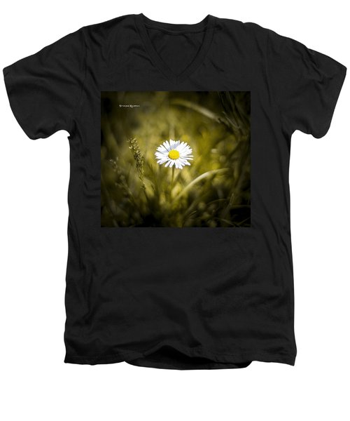 Men's V-Neck T-Shirt featuring the photograph The Lonely Daisy by Stwayne Keubrick