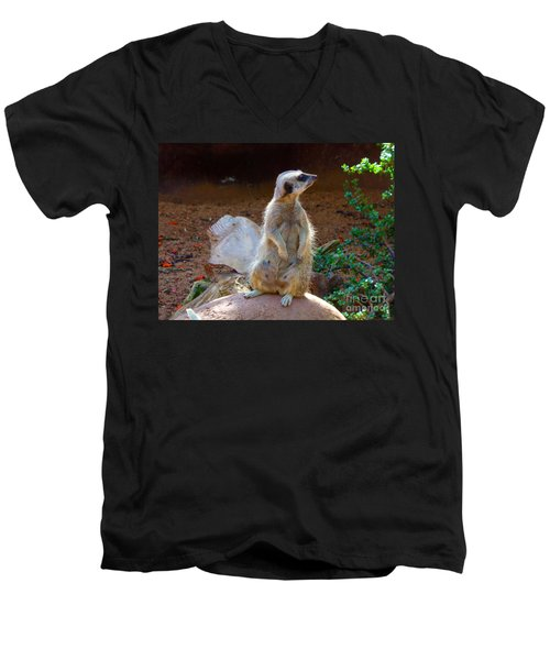 The Lookout - Meerkat Men's V-Neck T-Shirt