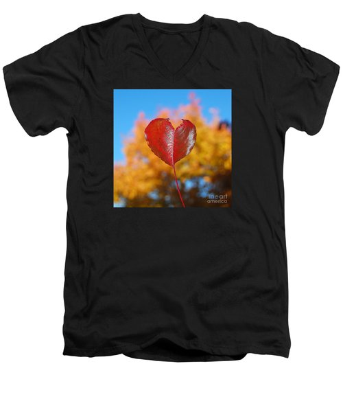 The Love Of Fall Men's V-Neck T-Shirt