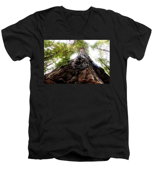 The Mighty Redwood Men's V-Neck T-Shirt