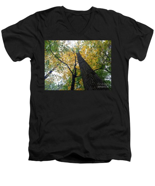 The Mighty Tulip Popular State Tree Of Indiana Men's V-Neck T-Shirt