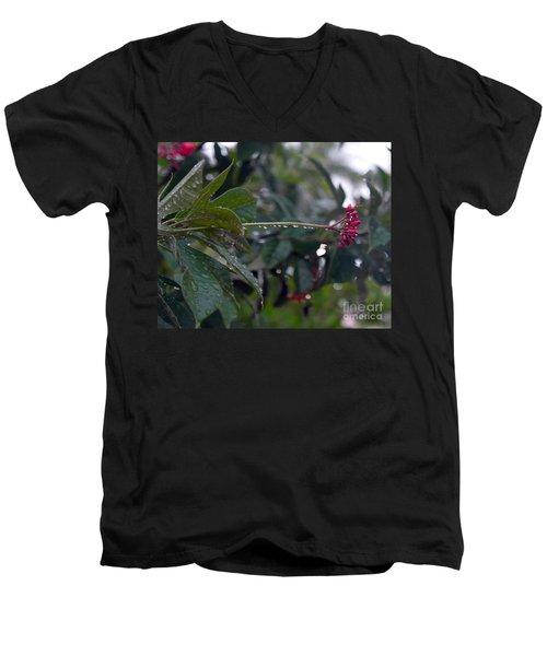 The Morning Kiss Men's V-Neck T-Shirt by Irma BACKELANT GALLERIES