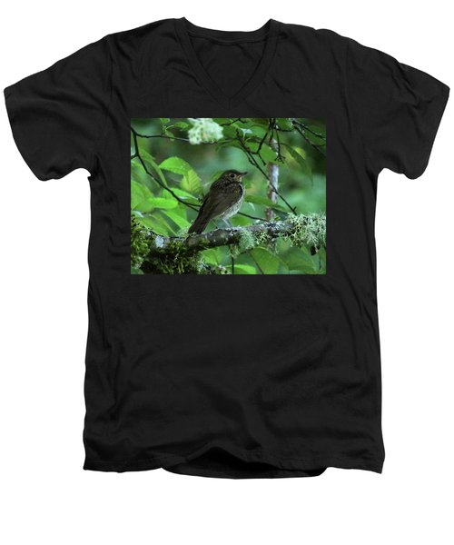 ..the Mysterious Thrush.. Men's V-Neck T-Shirt by I'ina Van Lawick