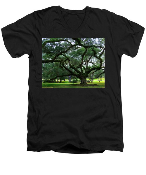 The Old Oak Men's V-Neck T-Shirt by Perry Webster