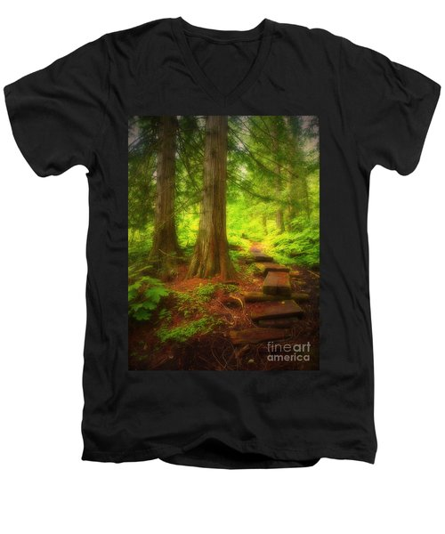 The Path Through The Forest Men's V-Neck T-Shirt