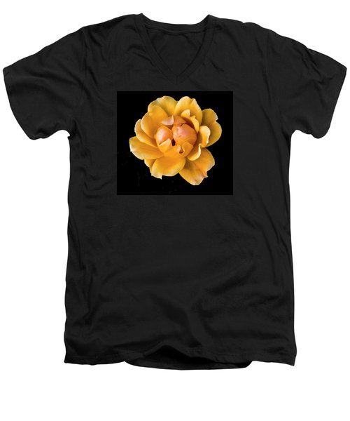 The Perfect Rose Men's V-Neck T-Shirt by Venetia Featherstone-Witty