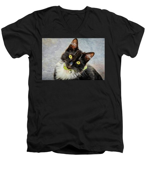 The Portrait Of A Cat Men's V-Neck T-Shirt