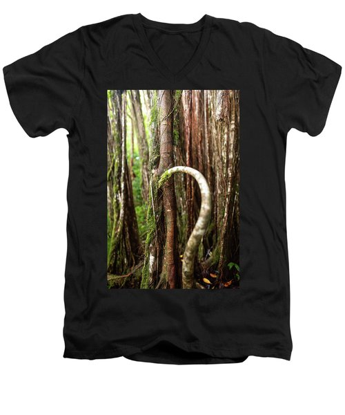 The Rainforest Men's V-Neck T-Shirt