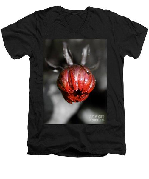 The Red Dahlia Men's V-Neck T-Shirt