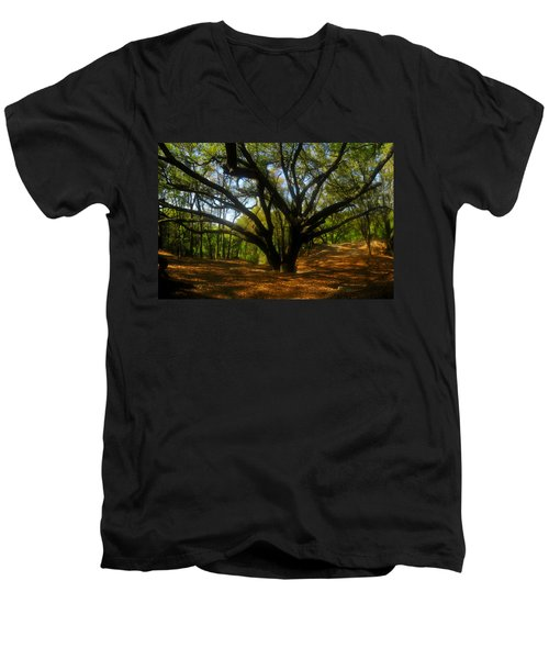 The Sacred Oak Men's V-Neck T-Shirt