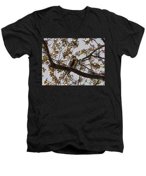 The Sea Eagle Men's V-Neck T-Shirt