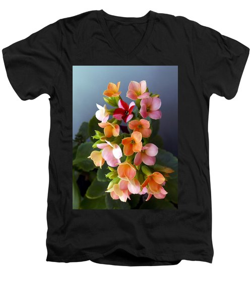 The Special One Men's V-Neck T-Shirt by Danielle R T Haney