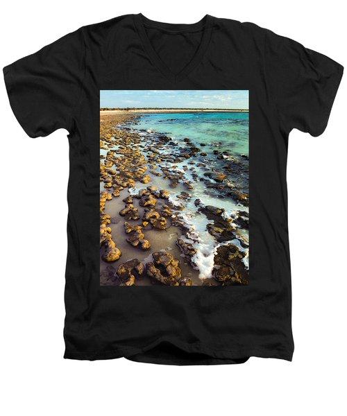 The Stromatolite Family Enjoying Its 1277500000000th Sunset Men's V-Neck T-Shirt