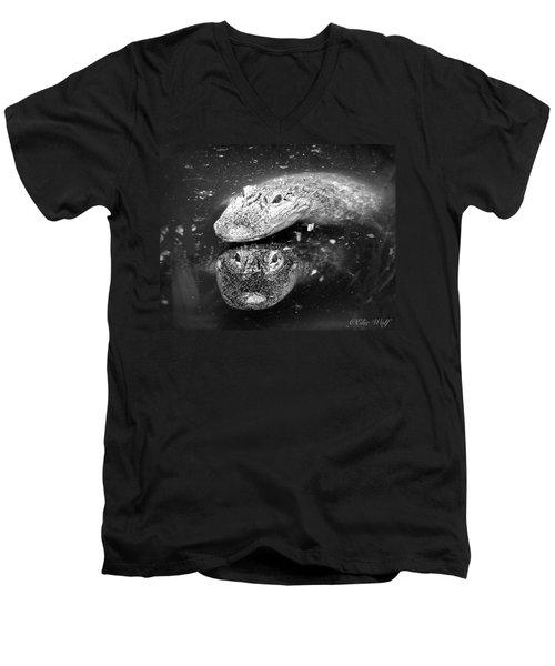 The Tao Of Dragons Men's V-Neck T-Shirt