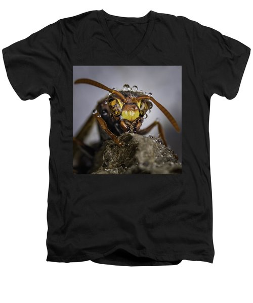 The Wasp Men's V-Neck T-Shirt