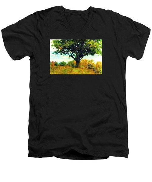 The Witness Tree Men's V-Neck T-Shirt