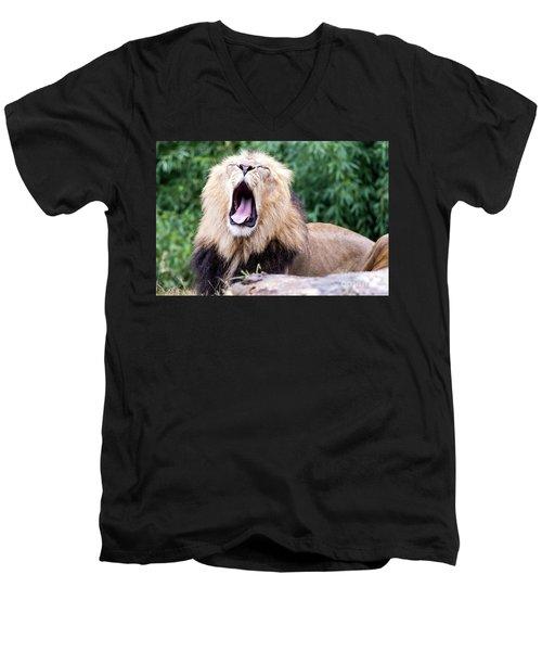The Yawn Men's V-Neck T-Shirt