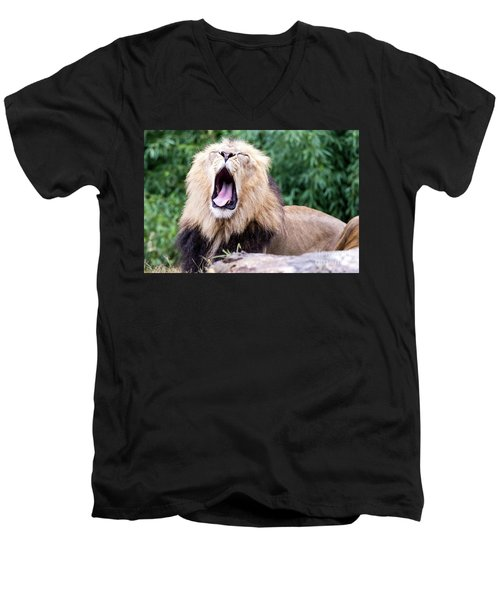 The Yawn Men's V-Neck T-Shirt