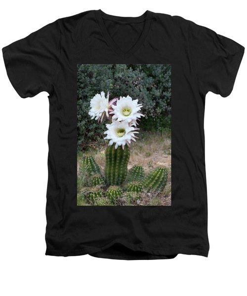 Three Blossoms Men's V-Neck T-Shirt by Monte Stevens