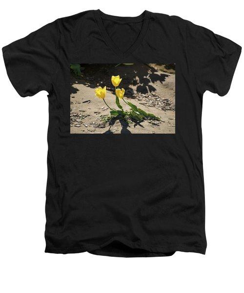 Three Gold Memories Men's V-Neck T-Shirt