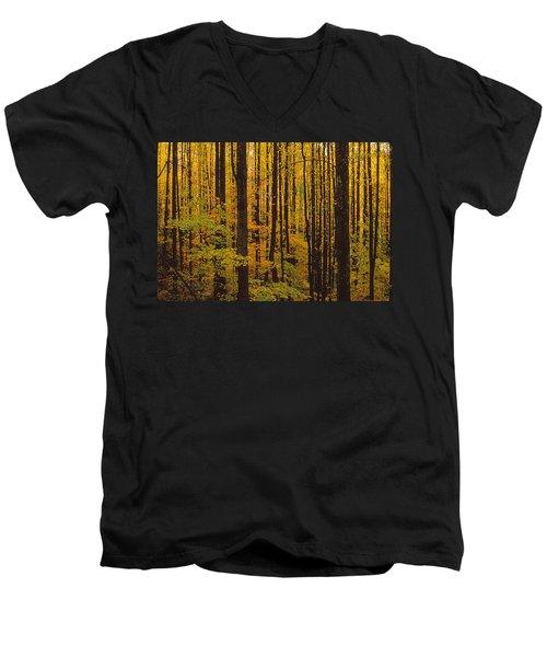 Through The Yellow Veil Men's V-Neck T-Shirt