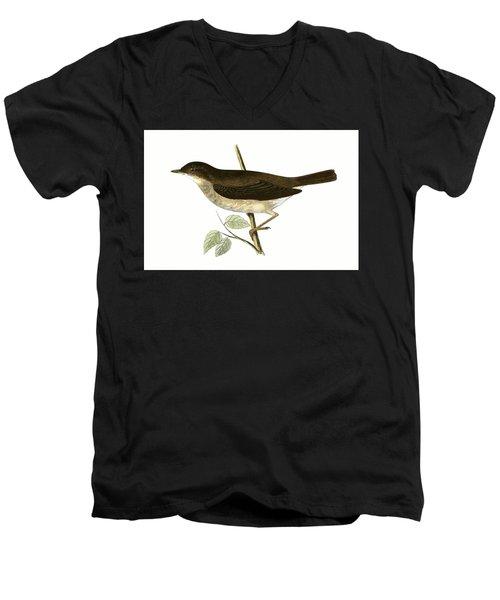 Thrush Nightingale Men's V-Neck T-Shirt by English School
