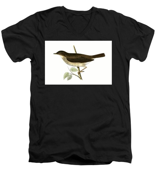 Thrush Nightingale Men's V-Neck T-Shirt