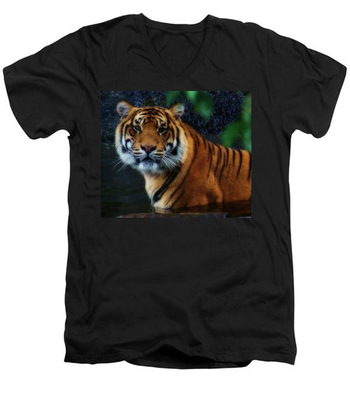 Tiger Land Men's V-Neck T-Shirt