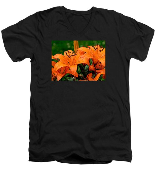 Tiger Lilies With Spring Shower Men's V-Neck T-Shirt