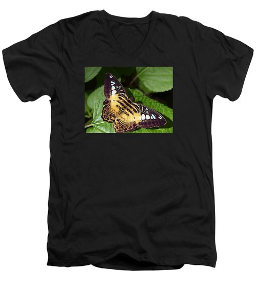 Tiger Print --- Clipper Butterfly Men's V-Neck T-Shirt