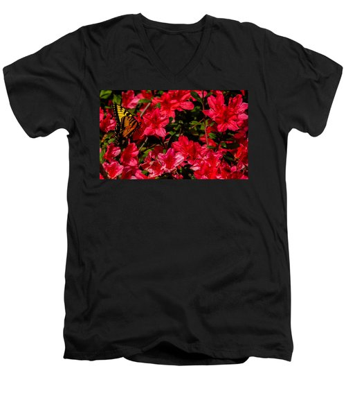 Tiger Swallowtail On A Red Azalea Men's V-Neck T-Shirt by John Harding