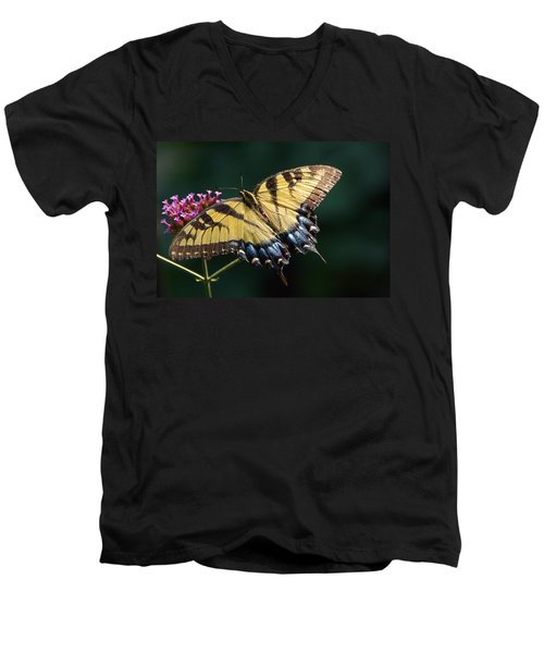 Men's V-Neck T-Shirt featuring the photograph Tigress And Verbena by Byron Varvarigos