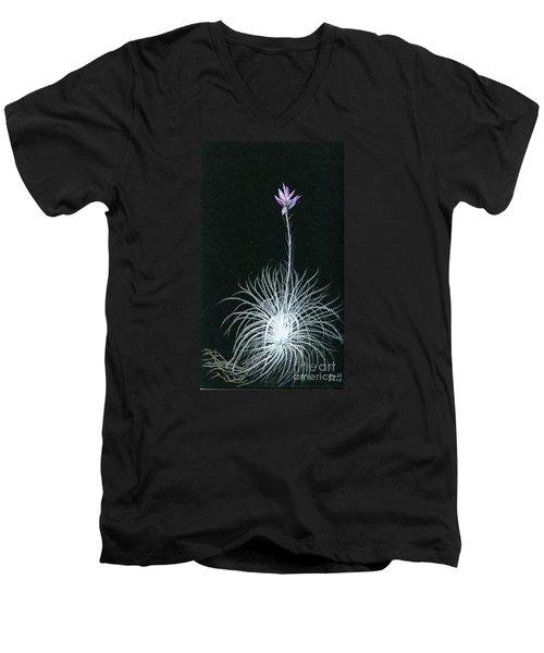 Tillandsia Tectorum Men's V-Neck T-Shirt