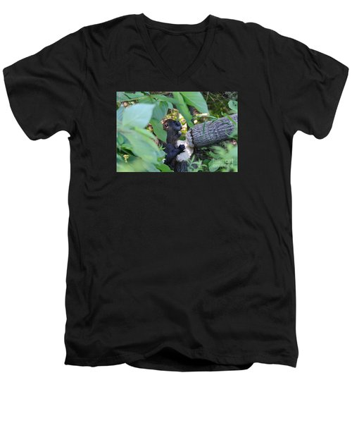 Timberrrrr Men's V-Neck T-Shirt
