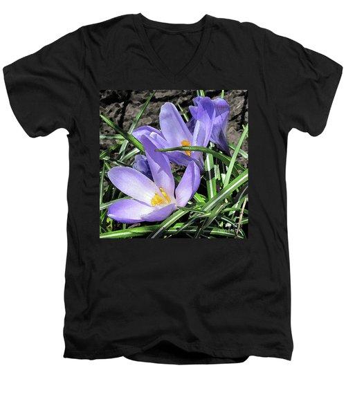 Time For Crocuses Men's V-Neck T-Shirt