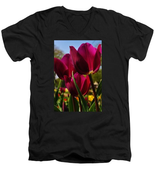 Men's V-Neck T-Shirt featuring the photograph Tip Toe Through The Tulips by Bruce Bley