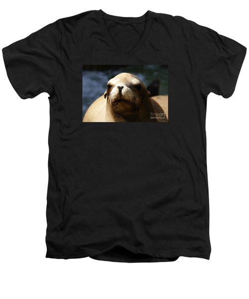 To Bask In Royal Sun Men's V-Neck T-Shirt by Linda Shafer