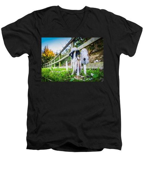 Toadstools. Men's V-Neck T-Shirt